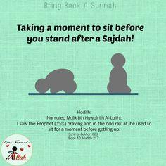 Revive the sunnah Islam Hadith, Allah Islam, Islam Quran, Alhamdulillah, Hadith Quotes, Muslim Quotes, Quran Quotes, Hindi Quotes, Beautiful Islamic Quotes