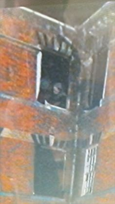 Ghost Pictures: The Nurse of St Crispins Psychiatric Hospital I love spooky ghost photos! Real Ghost Pictures, Ghost Images, Creepy Pictures, Ghost Pics, Random Pictures, Ghost Videos, Creepy Images, Paranormal Pictures, Paranormal Stories