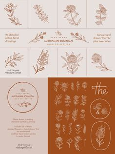 Hand drawn floral logo collection by Holii Carmody on Branding and logo design ideas and inspiration for small creative businesses Graphisches Design, Design Elements, How To Design Logo, Design Ideas, Interior Design, Illustration Blume, Botanical Illustration, Floral Logo, Floral Illustrations