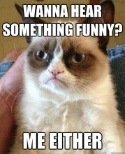 Wanna Hear Something Funny? - Grumpy Cat Quotes