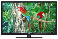 "RCA 32"" Direct LED HD TV 