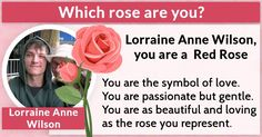 Which rose are you?