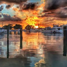 Cortez, Florida pic by Anne Francis.