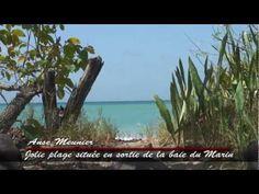 Trace des Caps, la plage de Anse Meunier #Martinique #Video