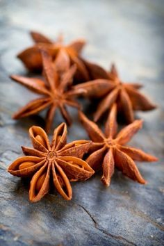 Star anise Ginger And Cinnamon, Spices And Herbs, Star Anise, Seed Pods, Herb Seeds, Food Styling, Mother Nature, Harvest, Food Photography