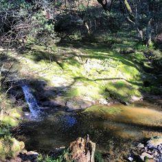 Wildcat creek waterfall in Tilden Park, Berkeley