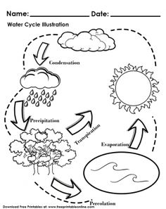 It looks like you're interested in our Water Cycle Illustration Worksheet. We also offer many different Kids Worksheets on our site, so check us out now and get to printing! Water Cycle Craft, Water Cycle For Kids, Water Cycle Model, Water Cycle Project, Water Cycle Activities, Weather Activities, 6th Grade Science, Kindergarten Science, Middle School Science