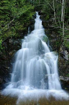 Cypress Mountain Waterfall, Cypress Mountain Provincial Park, West British Columbia, Canada. Photo: Bruce Irschick via Flickr