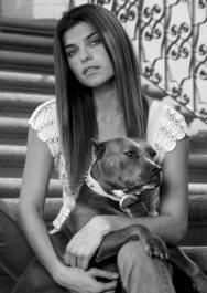 Actress Lake Bell and her gal Margaret the Pit Bull Black And White Dog, White Dogs, Lake Bell, American Pitbull, Bsl, Designer Dog Clothes, Fight The Good Fight, Pit Bull Love, Therapy Dogs
