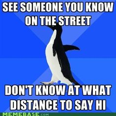 My spirit animal is a cross between Socially Awkward Penguin and Paranoid Parrot. I have problems.