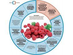 las características de las frambuesas #infografía vía @vitonica