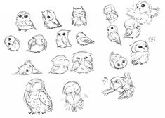 Cute owl sketches emotions