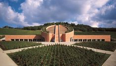 Weingut Petra und seine Architektur - Gourmetwelten - Das Genussportal