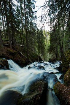 Forest waterfall - Finnish highest waterfall at Korkeakoski.