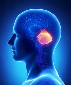Brain Tumor Symptoms Neck and Back Pain Spinal Fusion