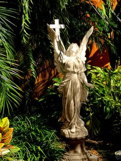 My own- Orlando- The Holy Land Experience
