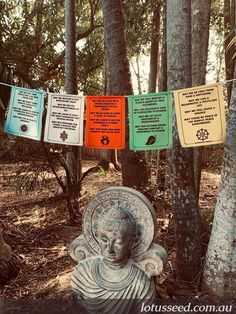 Lotus Seed prayer flags designed & printed in Australia to promote peace, compassion, spirituality & well-being. Get yours here: lotusseed.com.au Silent Prayer, God Prayer, Seed Quotes, Buddhist Prayer, Prayer Flags, Angel Art, Garden Structures, Flag Design, Feeling Loved