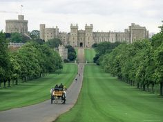 The Long Walk. Windsor Castle