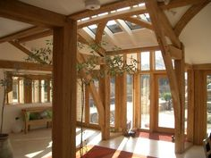 Dappled light in entrance hall with green oak sling brace frames. By Roderick James Architects