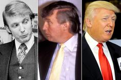 An Illustrated History of Donald Trump& Hair. Don& Read . Rare Photos, Funny Photos, Donald Trump Hair, Miss Teen Usa, Current President, Beauty News, Toxic People, Actors & Actresses, Presidents