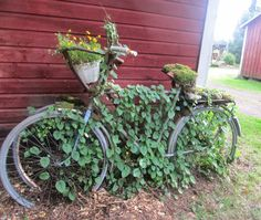 Tee se itse -ideoita puutarhaan : Ruukut ym. istutusvinkit