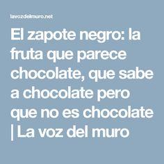 El zapote negro: la fruta que parece chocolate, que sabe a chocolate pero que no es chocolate   La voz del muro