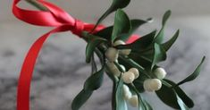 A Christmas cake staple - learn how to make gum paste mistletoe with Ashley Barbey!