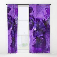Revered Bearded Iris...http://ow.ly/SGfN30brKt4 #beardediris #botanical #flower #plant #garden #bloom #seed #blossom #petal #Spring