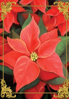 Accent Flag - Elegant Poinsettias Decorative Flag at Garden House Flags