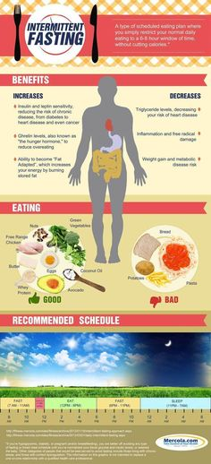 Intermittent Fasting belly fat melting weightloss