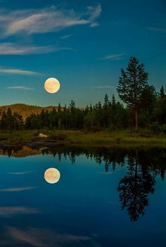 The photograph is an example of balance in nature. The reflection of the trees and moon on the lake make it seem like land and then the upside down. If folded and put together they would make up one exact forest and moon. Beautiful Moon, Beautiful World, Beautiful Places, Beautiful Pictures, Beautiful Photos Of Nature, Shoot The Moon, Moon Pictures, Night Pictures, Summer Nights