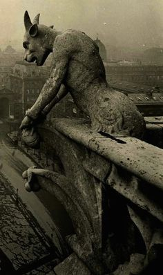 Gargoyle in Notre Dame Cathedral Paris, France. Scary statues built to keep evil spirits at bay. Photo Vintage, Vintage Photos, Vintage Photography, Art Photography, Scary, Creepy, Gothic Architecture, Macabre, Dark Art