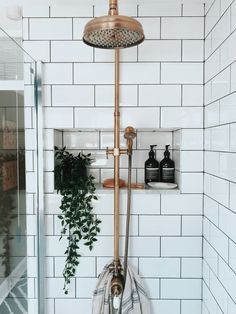 This bathroom area is such a clean design! Absolutely loving the decor and how the statement brass rain shower anchors the space while the subway wall tiles design and plant accent elements gives a nice pop of color and texture!