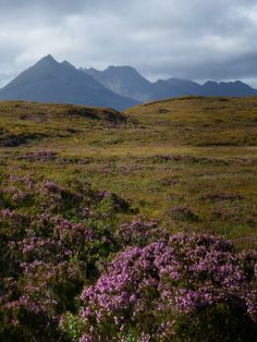 Black Cuillins on Isle of Skye