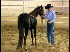 Clinton Anderson -desensitizing your young horse
