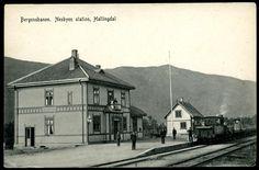Buskerud fylke Hallingdal NESBYEN STATION med tog i 1911 Utg L.K.Ødegaard, Nes datert 1911