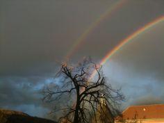 Weather, Heidelberg (Germany)