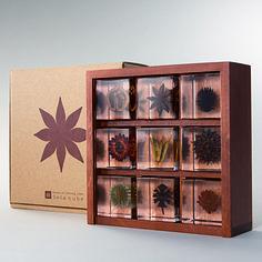 Specimen Box Set (contains 9 Sola Cubes)