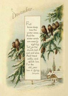 Kittens Sharing Tutu - Avanti Cat Birthday Card - Greeting Card by Avanti Press Christmas Bird, Victorian Christmas, Vintage Christmas Cards, Xmas Cards, Christmas And New Year, Vintage Cards, Vintage Paper, Vintage Postcards, Holiday Cards