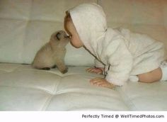 Two lovable babies – When the two try to kiss, it is just too adorable not to ignore.