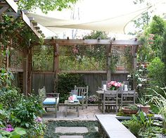 Creating privacy in your own backyard.