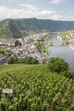 Wine & a Castle in the Moselle Valley - Cochem, Germany (via Bloglovin.com )