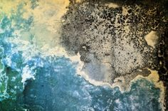 Mucegaiul din baie este inestetic și poate fi foarte periculoas pentru sănătate pentru că mucegaiul este o ciupercă ai cărei spori pot ajunge în plămâni.