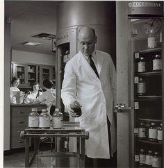 University of Minnesota scientist working in the Medical School's blood bank