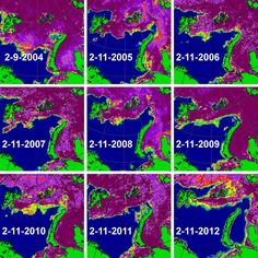 Comparison of sea ice concentration maps for February 11th in the 2004-2012 period