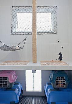 """Sob a pequena laje, caixas higiênicas (as azuis) são os """"banheiros"""". Dentro delas, há areia. Tijolos vazados foram estrategicamente colocados nessa área, para minimizar o odor. A bancada serve para dar banho e limpar as orelhas dos gatos"""