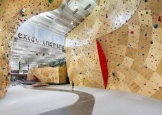 Yes, it's a co-working space with a climbing wall! (Brooklyn Boulders Coworking Space featured in DesignBoom) Rock Climbing Gym, Indoor Climbing, Climbing Wall, Sport Climbing, Open Office, Cool Office, Office Spaces, Work Spaces, Coworking Space