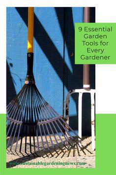 The 9 garden tools every gardener needs...