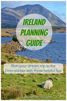 If you're planning a trip to Ireland, look no further than this guide. We cover FAQs about visiting Ireland, public transportation, accommodations, & more! Ireland Travel Guide, Europe Travel Guide, Travel Guides, Travel Destinations, European Vacation, European Destination, European Travel, Train Tour, International Travel Tips