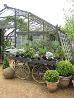 Greenhouses require maintenance in order to function as a habitat for your plants. Here is advice on how to maintain your greenhouse in good working order. Garden Shop, Dream Garden, Garden Art, Garden Design, Garden Gates, Greenhouse Shed, Greenhouse Gardening, Container Gardening, Greenhouse Kitchen